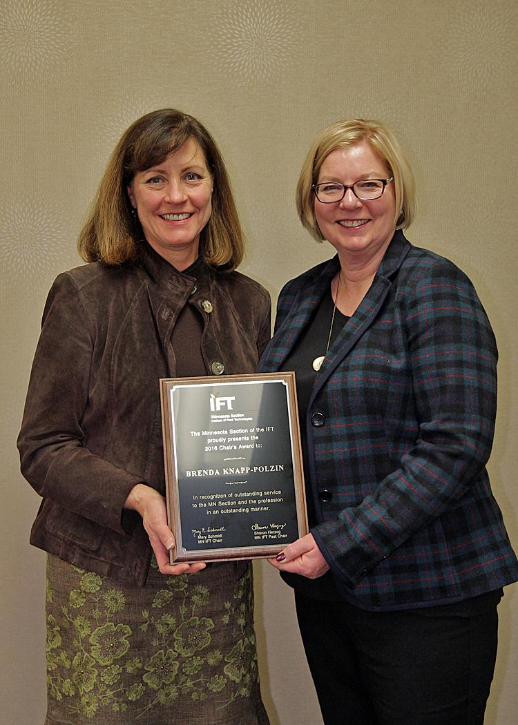 Brenda Knapp Polzin - Chair's Award